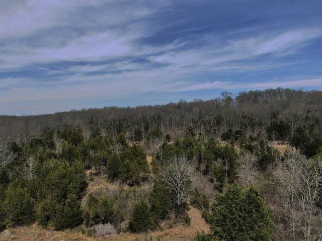 0 Cedar Hill Rd, Watertown, TN 37184 (MLS #RTC2239598) :: Village Real Estate