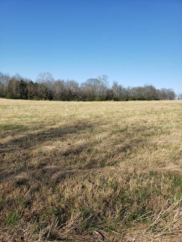 2B Butler Rd, Columbia, TN 38401 (MLS #RTC2240563) :: The Milam Group at Fridrich & Clark Realty
