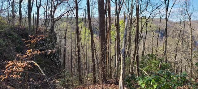 0 Hummingbird Ln Lo 1, Monteagle, TN 37356 (MLS #RTC2240941) :: Nashville on the Move