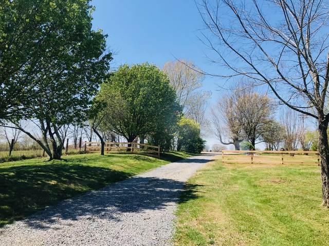 580 Womack Rd, Bethpage, TN 37022 (MLS #RTC2242673) :: Team George Weeks Real Estate