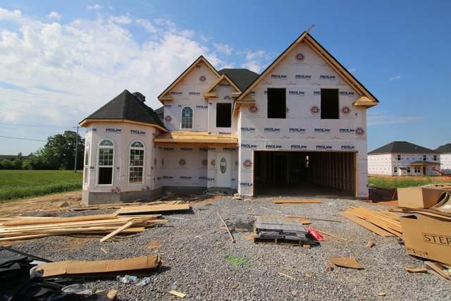 203 Charleston Oaks Reserves, Clarksville, TN 37042 (MLS #RTC2243782) :: Village Real Estate