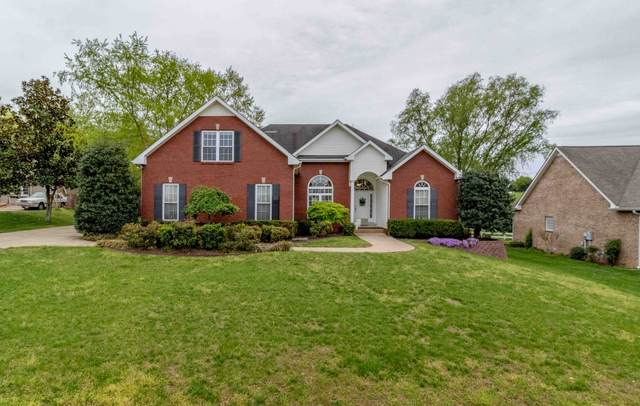 3132 Southpoint Dr, Clarksville, TN 37043 (MLS #RTC2244467) :: Oak Street Group