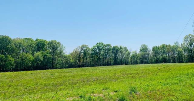 275 Wood Duck Lane, Clifton, TN 38425 (MLS #RTC2250169) :: Village Real Estate