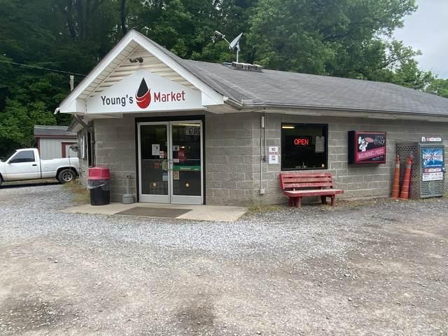 3818 Highway 49 N, Tennessee Ridge, TN 37178 (MLS #RTC2251825) :: The Adams Group