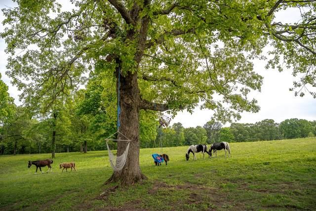 10664 Old Cox Pike, Bon Aqua, TN 37025 (MLS #RTC2252118) :: Trevor W. Mitchell Real Estate