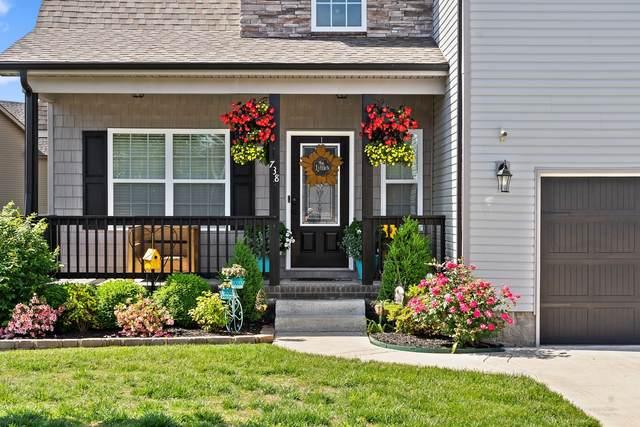 738 Sleek Fox Dr, Clarksville, TN 37040 (MLS #RTC2256135) :: Village Real Estate
