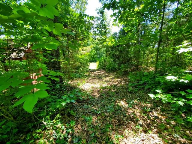 65 S Old Military Rd, Saint Joseph, TN 38481 (MLS #RTC2258144) :: Village Real Estate