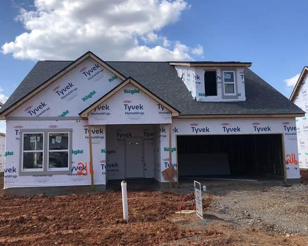 216 Mills Creek, Clarksville, TN 37042 (MLS #RTC2262844) :: Village Real Estate