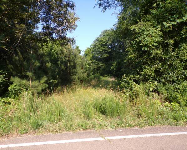 1 Buchanan / Highway 218, Buchanan, TN 38222 (MLS #RTC2264532) :: Village Real Estate