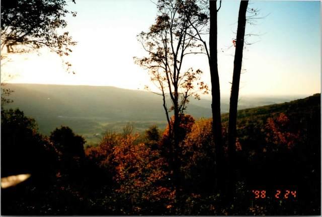 0 Valley Vw Dr, Altamont, TN 37301 (MLS #RTC2265494) :: The Huffaker Group of Keller Williams