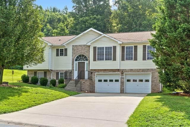 995 Hedge Apple Dr, Clarksville, TN 37040 (MLS #RTC2268856) :: Oak Street Group