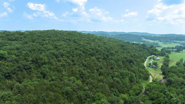 0 Winfree Ln, Brush Creek, TN 38547 (MLS #RTC2273711) :: Village Real Estate