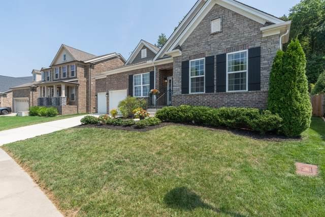 8541 Beautiful Valley Dr, Nashville, TN 37221 (MLS #RTC2276724) :: Village Real Estate