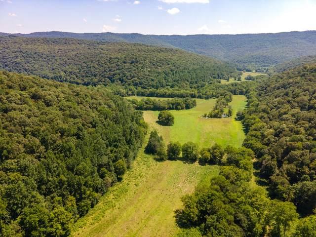 0 Rowe Gap Rd, Belvidere, TN 37306 (MLS #RTC2285161) :: Village Real Estate