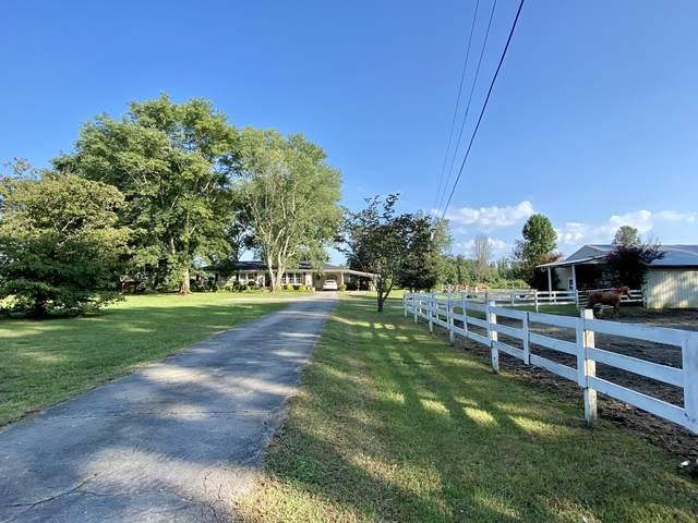 147 Shelton Dr, Saint Joseph, TN 38481 (MLS #RTC2285249) :: John Jones Real Estate LLC