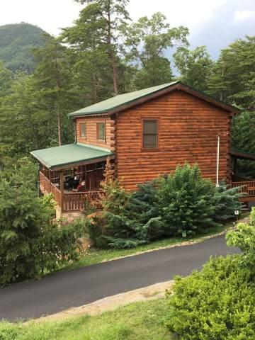 1730 Bluff Ridge Rd, Sevierville, TN 37876 (MLS #RTC2289008) :: John Jones Real Estate LLC