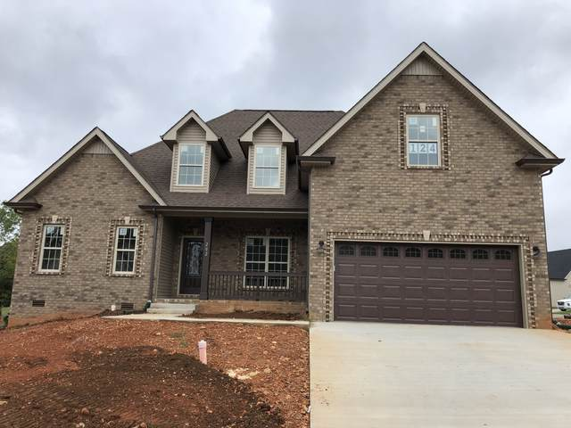 202 Penelope Lane, Clarksville, TN 37043 (MLS #RTC2292533) :: Ashley Claire Real Estate - Benchmark Realty