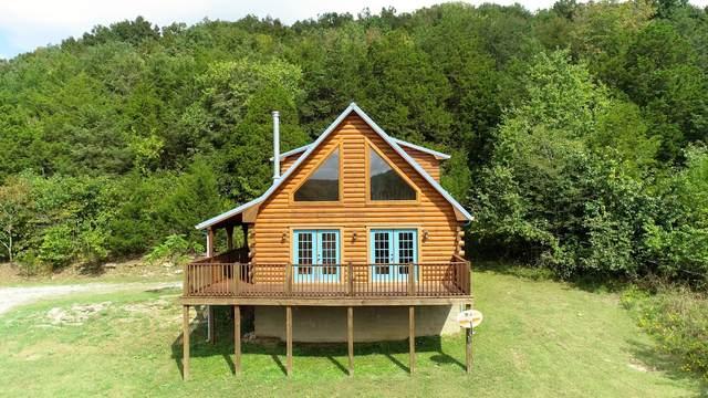 493 Lake Hollow Rd, Woodbury, TN 37190 (MLS #RTC2294458) :: RE/MAX Homes and Estates, Lipman Group