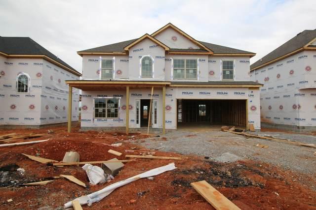 262 Mills Creek, Clarksville, TN 37042 (MLS #RTC2297962) :: Village Real Estate