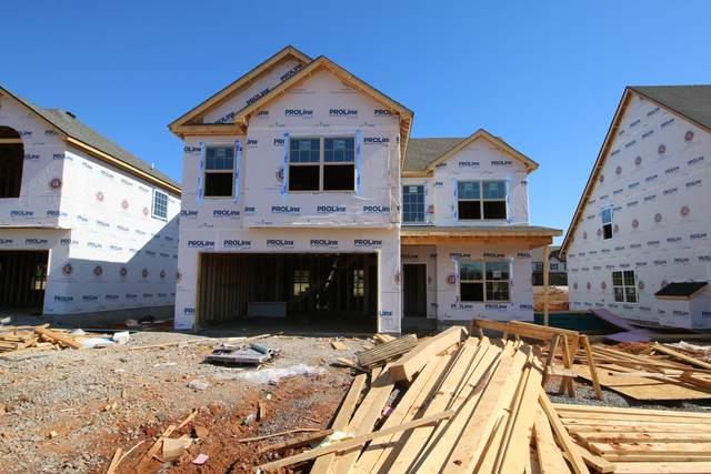 168 Mills Creek, Clarksville, TN 37042 (MLS #RTC2300360) :: Re/Max Fine Homes