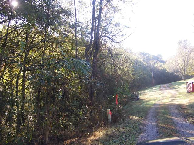 0 Beaver Vw Ln, Cornersville, TN 37047 (MLS #RTC2300985) :: Team George Weeks Real Estate