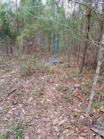 0 Highway 100, Bon Aqua, TN 37025 (MLS #1855033) :: CityLiving Group