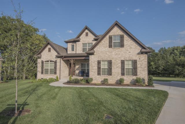 125 Saltville Ct, Smyrna, TN 37167 (MLS #1856435) :: EXIT Realty Bob Lamb & Associates