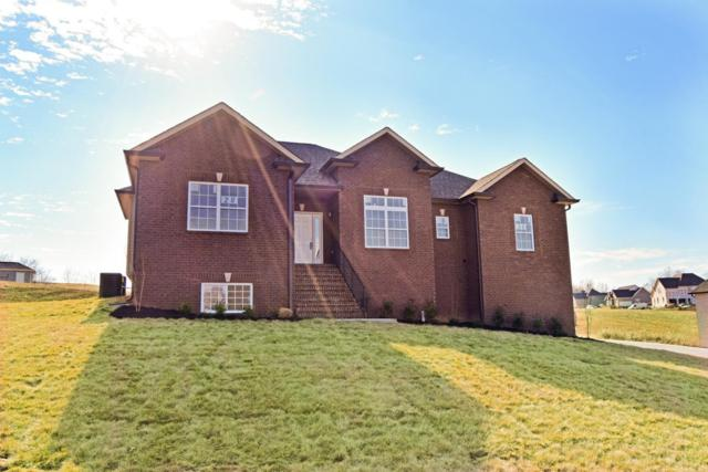991 Red Bluff Way (Lot 28), Adams(Clarksville), TN 37010 (MLS #1874081) :: Ashley Claire Real Estate - Benchmark Realty