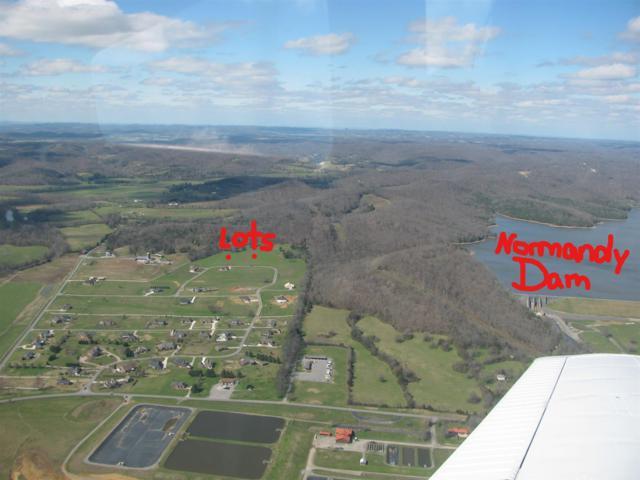 338 Grand View Cir, Normandy, TN 37360 (MLS #1889798) :: Nashville on the Move