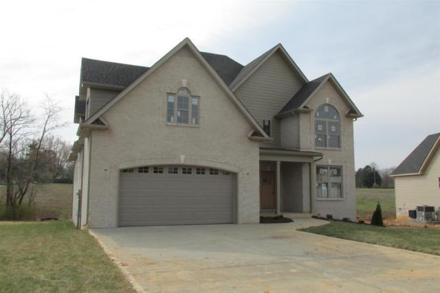 1036 Chagford Drive, Clarksville, TN 37043 (MLS #1901502) :: Team Wilson Real Estate Partners