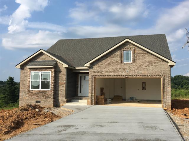 52 Ivy Bend, Clarksville, TN 37043 (MLS #1907813) :: Ashley Claire Real Estate - Benchmark Realty