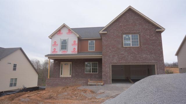 177 Timber Springs, Clarksville, TN 37042 (MLS #1911746) :: NashvilleOnTheMove | Benchmark Realty