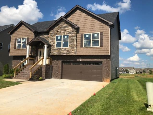 146 Hickory Wild, Clarksville, TN 37043 (MLS #1916193) :: RE/MAX Choice Properties