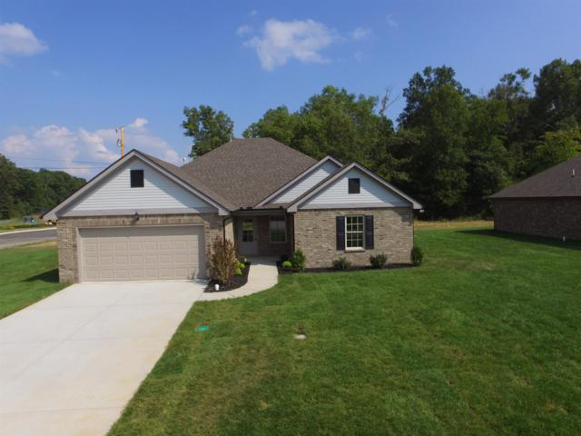 289 Preserve Circle, Manchester, TN 37355 (MLS #1917836) :: Nashville On The Move