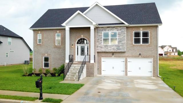 1229 Fallon Dr, Clarksville, TN 37043 (MLS #1933581) :: REMAX Elite
