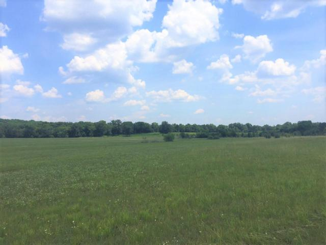 3510 Hwy 231 North, Shelbyville, TN 37160 (MLS #1939334) :: FYKES Realty Group