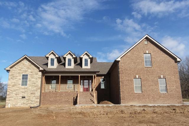 125 Rivercrest Lane, Castalian Springs, TN 37031 (MLS #1948292) :: John Jones Real Estate LLC
