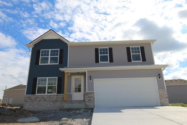 119 Chyntara Drive, LaVergne, TN 37086 (MLS #1951575) :: John Jones Real Estate LLC