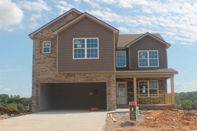 448 Mirren Circle, Clarksville, TN 37042 (MLS #1953842) :: Nashville On The Move | Keller Williams Green Hill