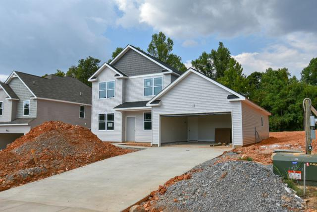 349 West Creek Farms, Clarksville, TN 37042 (MLS #1958989) :: Nashville On The Move