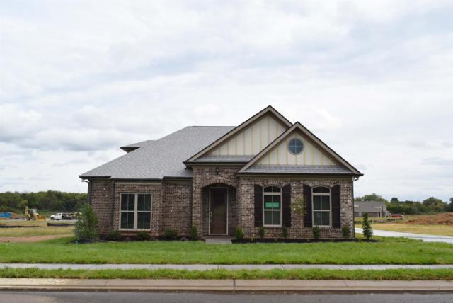 3216 Rift Lane, Murfreesboro, TN 37130 (MLS #1971163) :: REMAX Elite