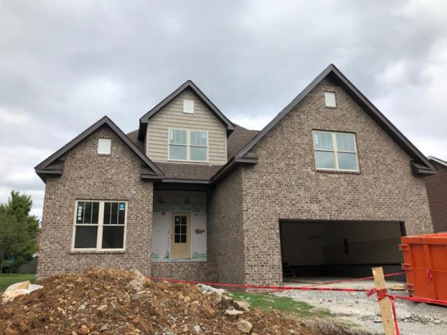 3018 Dogwood Trl, Spring Hill, TN 37174 (MLS #1975245) :: DeSelms Real Estate