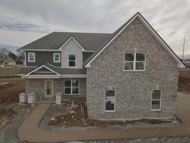 907 Paislee Raine Drive, Smyrna, TN 37167 (MLS #1987881) :: John Jones Real Estate LLC