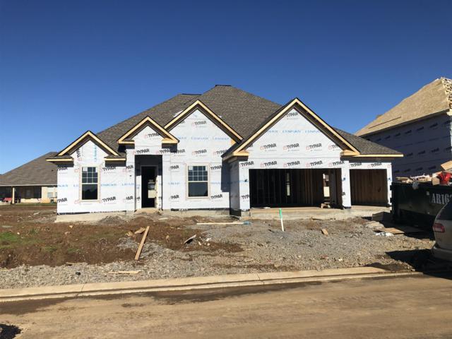 925 Sapphire Drive- Lot 159L, Murfreesboro, TN 37128 (MLS #1996582) :: Team Wilson Real Estate Partners