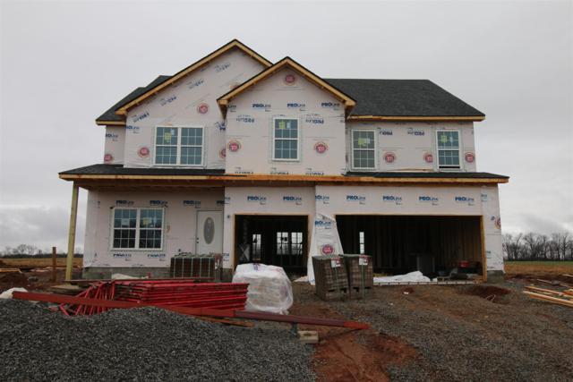 171 Summerfield, Clarksville, TN 37040 (MLS #1998695) :: Nashville on the Move