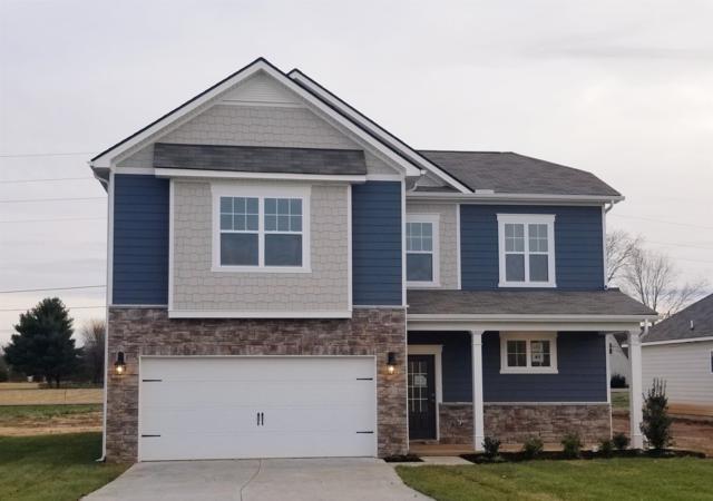 331 William Dylan Dr- Lot 41, Murfreesboro, TN 37129 (MLS #2000059) :: Team Wilson Real Estate Partners