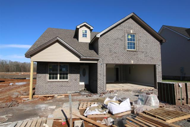 287 The Groves At Hearthstone, Clarksville, TN 37040 (MLS #2003880) :: Nashville on the Move