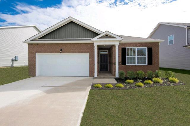 337 Tessa Grace Way #12, Murfreesboro, TN 37129 (MLS #RTC2034612) :: Village Real Estate