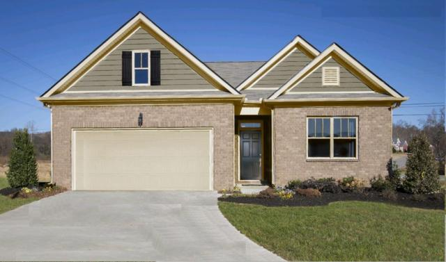 313 Tessa Grace Way #6, Murfreesboro, TN 37129 (MLS #RTC2040987) :: Village Real Estate