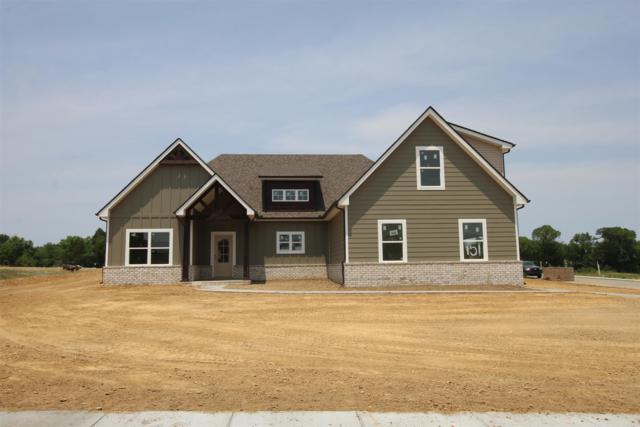 421 Peak Top Tr (Lot 151), La Vergne, TN 37086 (MLS #RTC2042617) :: Team Wilson Real Estate Partners
